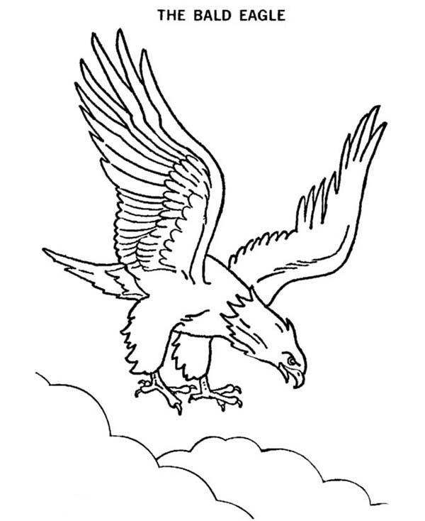 55 dibujos de Águilas para colorear | Oh Kids | Page 1