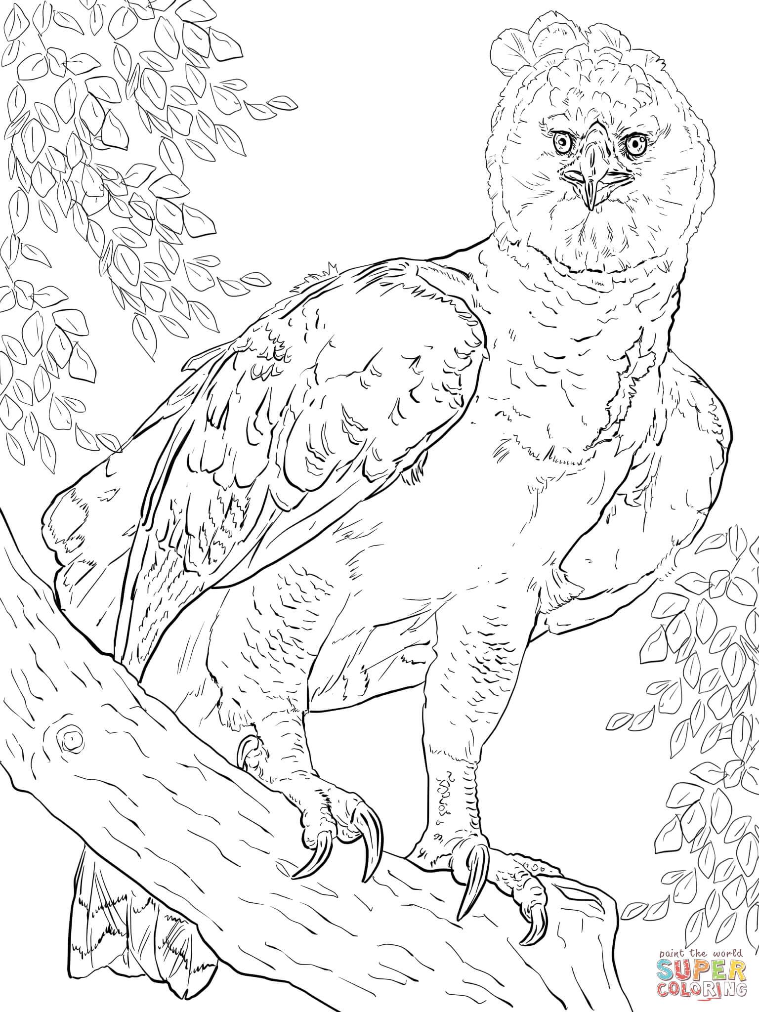 55 dibujos de Águilas para colorear | Oh Kids | Page 3