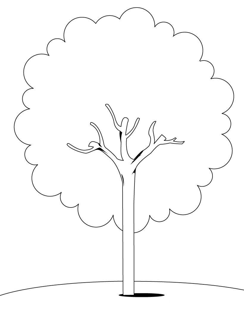 66 dibujos de Árboles para colorear   Oh Kids   Page 4