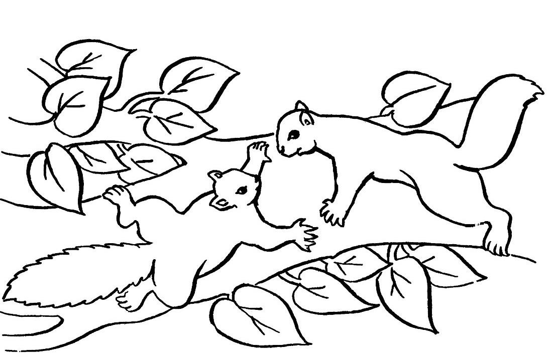 67 dibujos de Ardillas para colorear | Oh Kids | Page 4