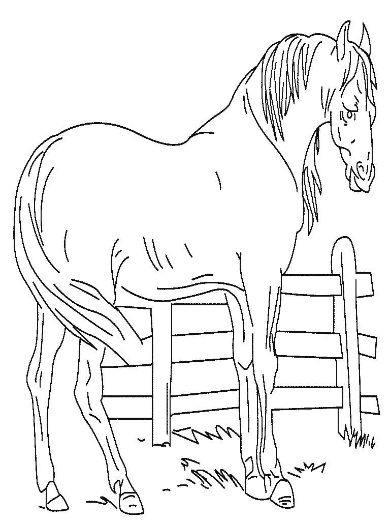 296 dibujos de Caballos para colorear | Oh Kids | Page 30