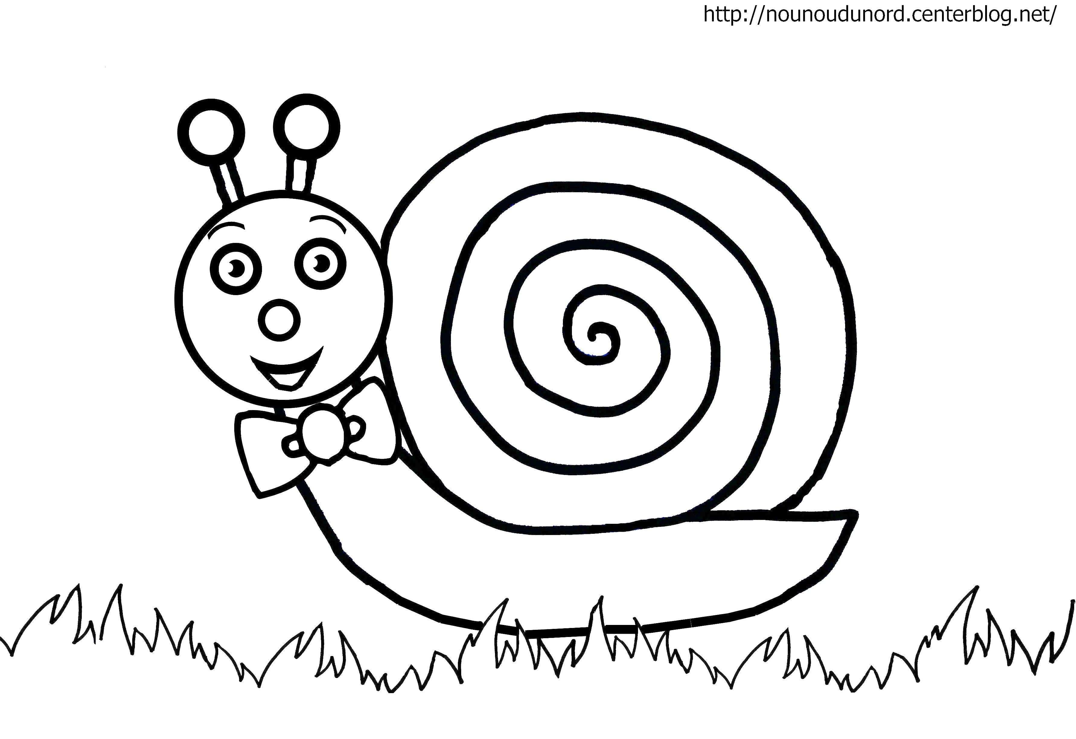 51 dibujos de caracoles para colorear oh kids page 1 - Coloriage enfants gratuit ...
