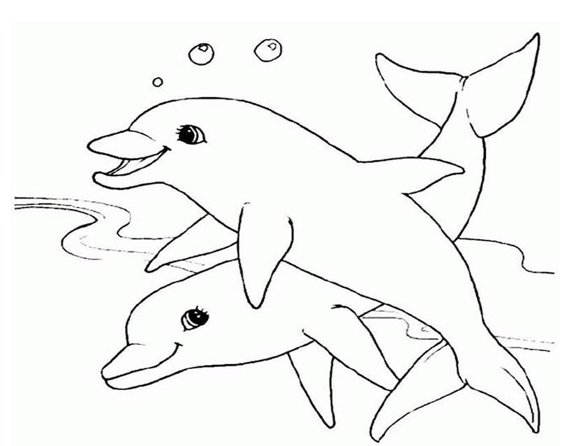 146 dibujos de Delfines para colorear | Oh Kids | Page 7