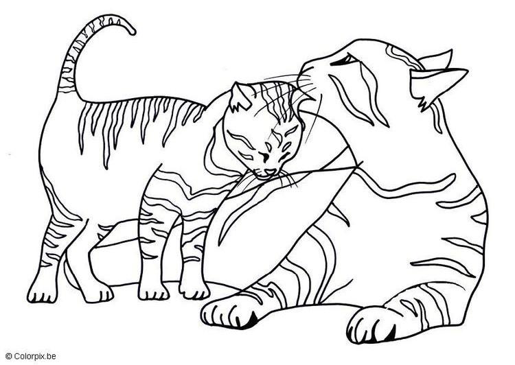260 Dibujos De Gatos Para Colorear Oh Kids Page 22