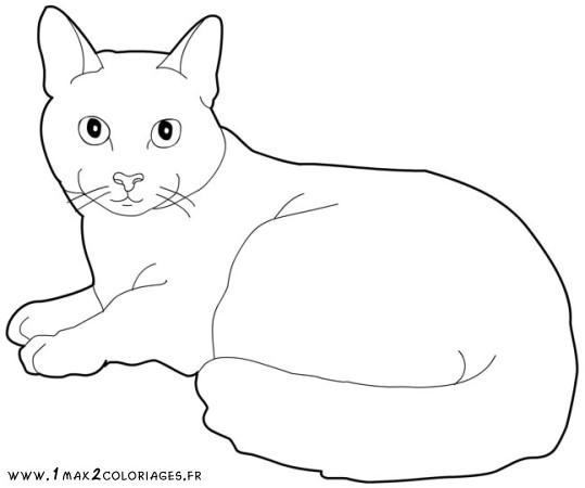 260 Dibujos De Gatos Para Colorear Oh Kids Page 24