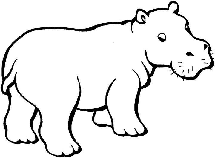 107 dibujos de Hipopótamos para colorear | Oh Kids | Page 8