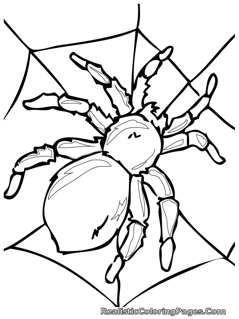 56 dibujos de Insectos para colorear | Oh Kids | Page 5