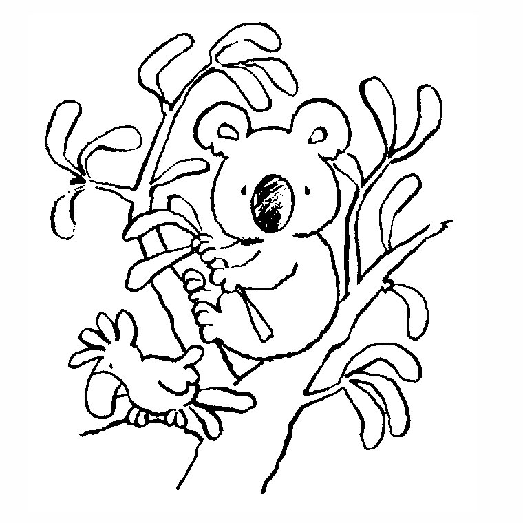 77 Dibujos De Koalas Para Colorear Oh Kids Page 7