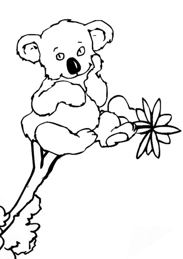 77 Dibujos De Koalas Para Colorear Oh Kids Page 8