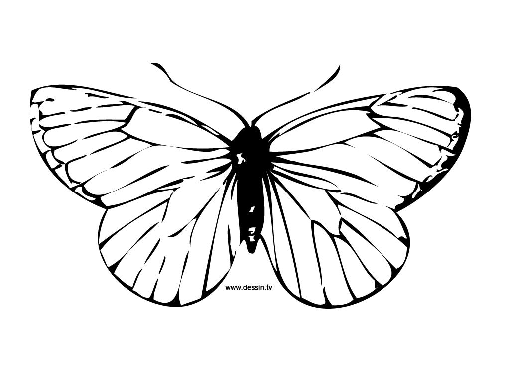 110 dibujos de mariposas para colorear oh kids page 2 - Modele de papillon a imprimer ...