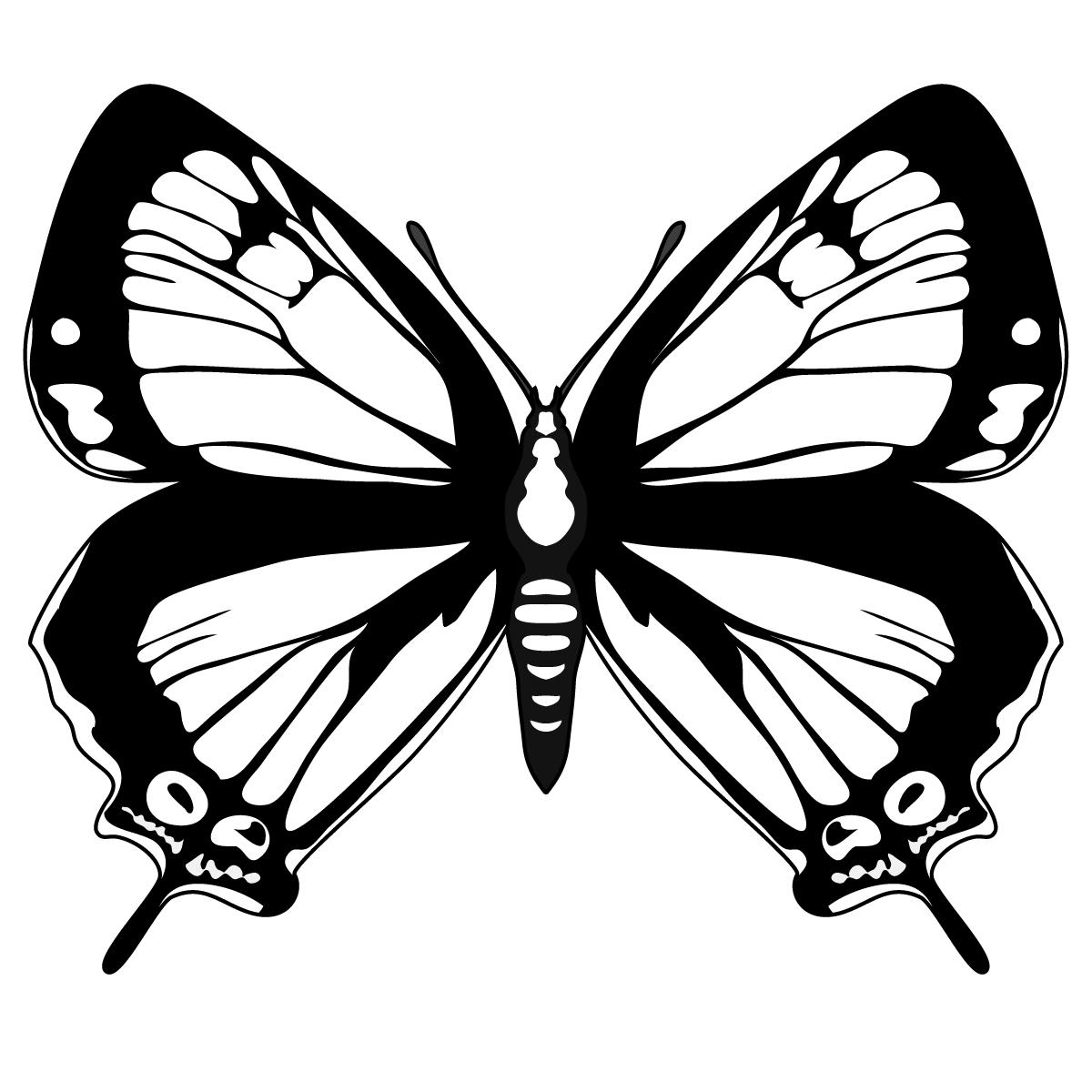 Dibujos De Mariposas Reales