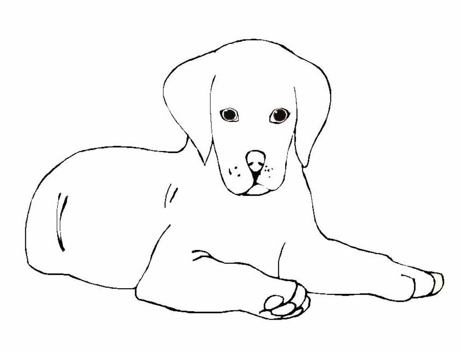 302 dibujos de Perros para colorear | Oh Kids | Page 3