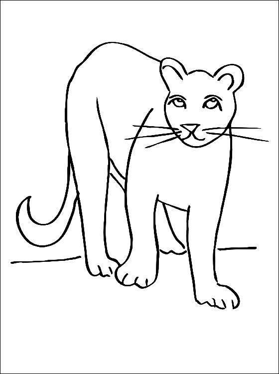 40 dibujos de Pumas para colorear | Oh Kids | Page 3