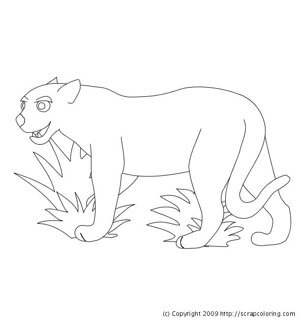 ganador Desalentar rosado  40 dibujos de Pumas para colorear | Oh Kids | Page 3