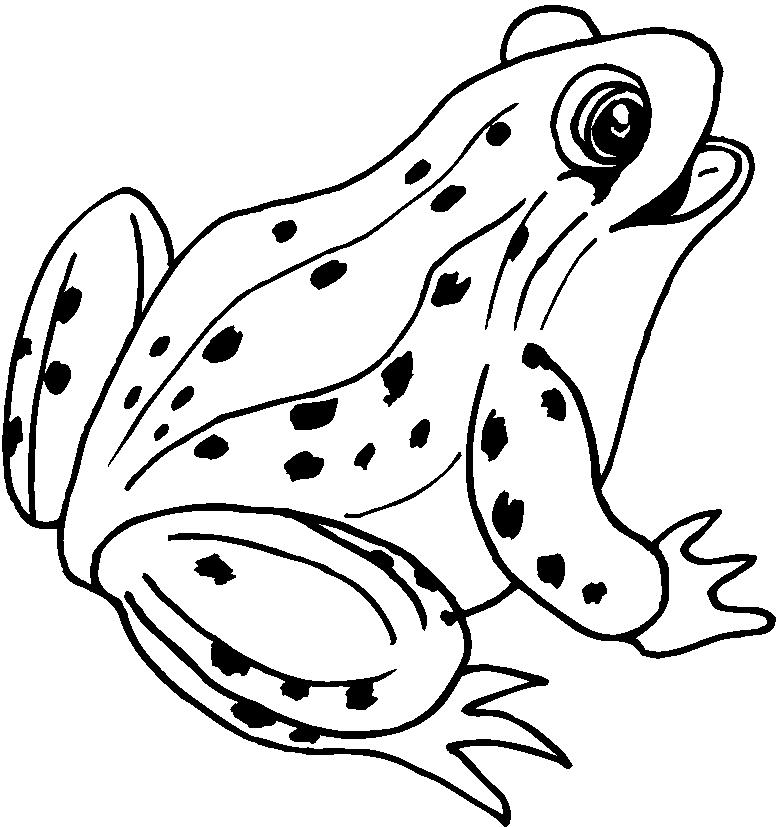 73 dibujos de Ranas para colorear | Oh Kids | Page 1
