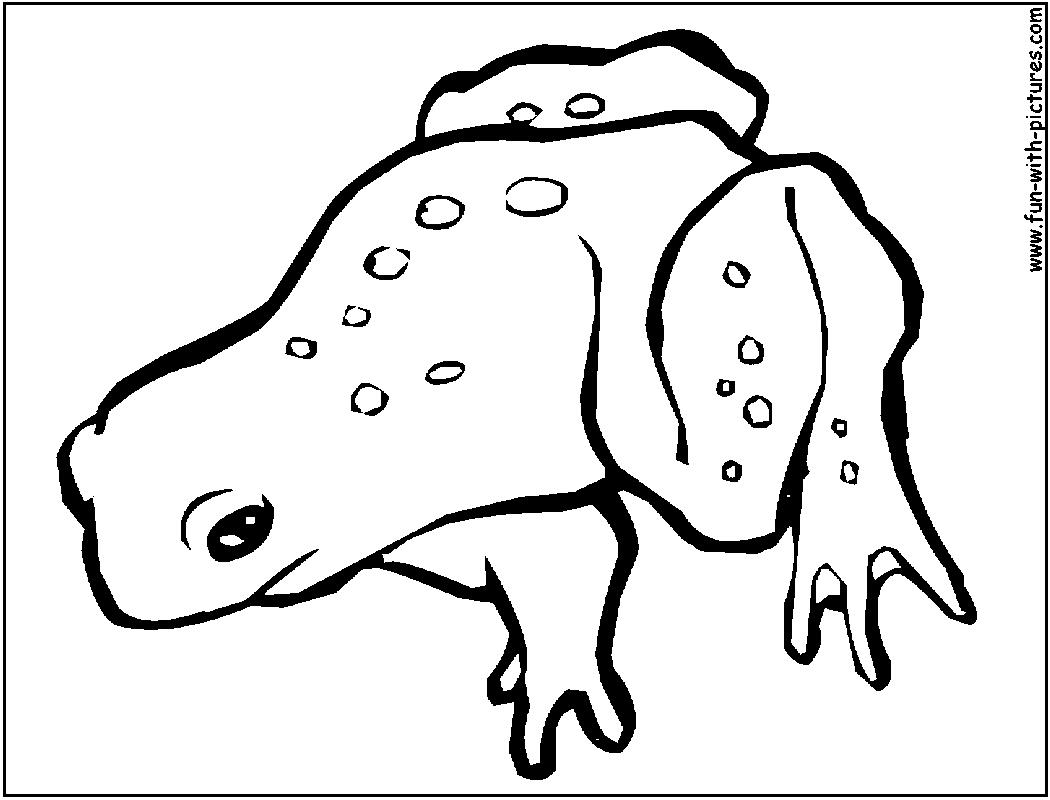 73 dibujos de Ranas para colorear   Oh Kids   Page 2