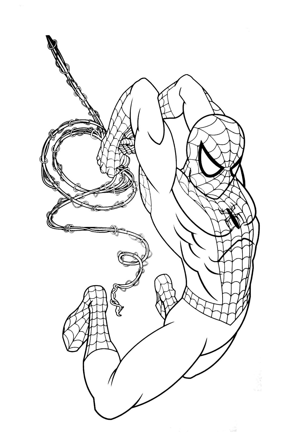 167 dibujos de Spiderman para colorear