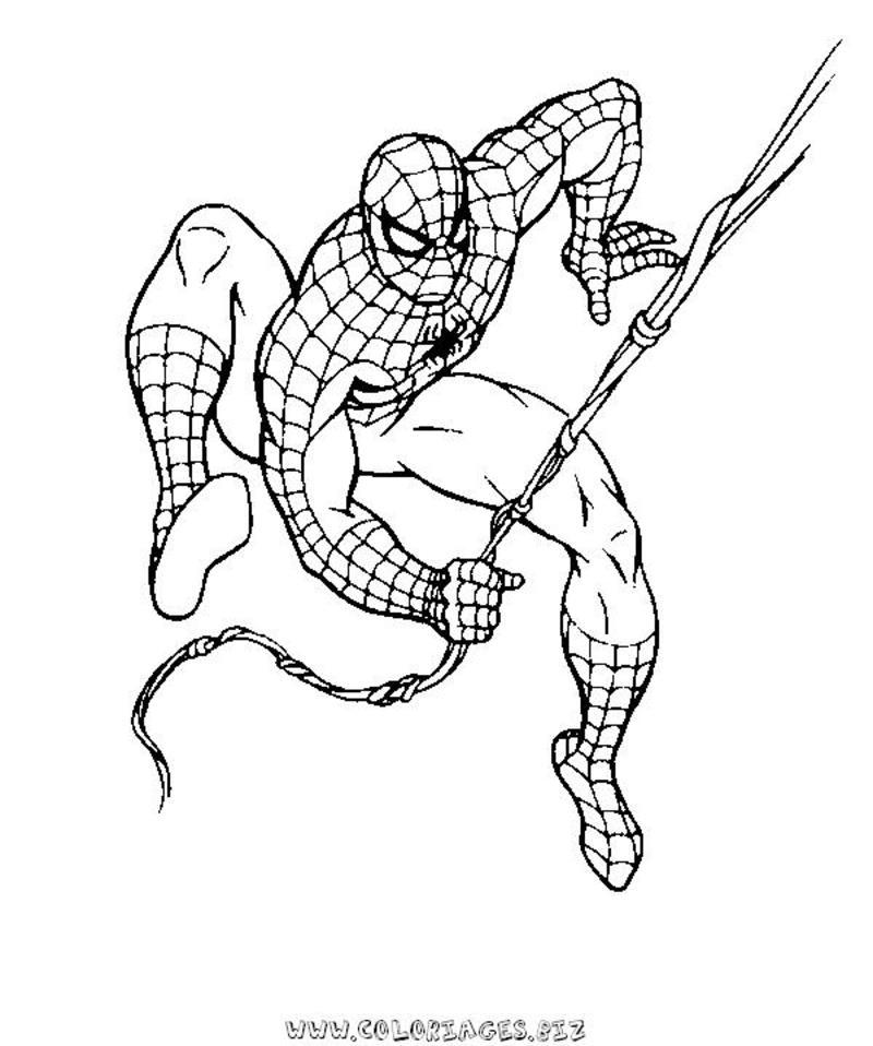 167 dibujos de spiderman para colorear oh kids page 14 - Coloriage spiderman 1 ...