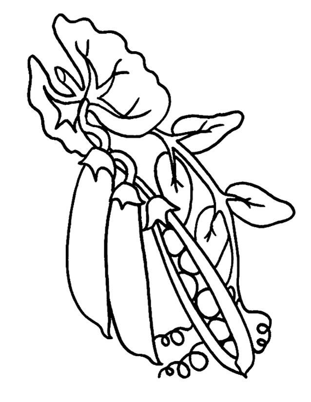 57 Dibujos De Verduras Para Colorear Oh Kids Page 3